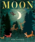 Moon: A Peek Through Picture Book