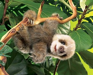 Sloth Puppet by Folkmanis
